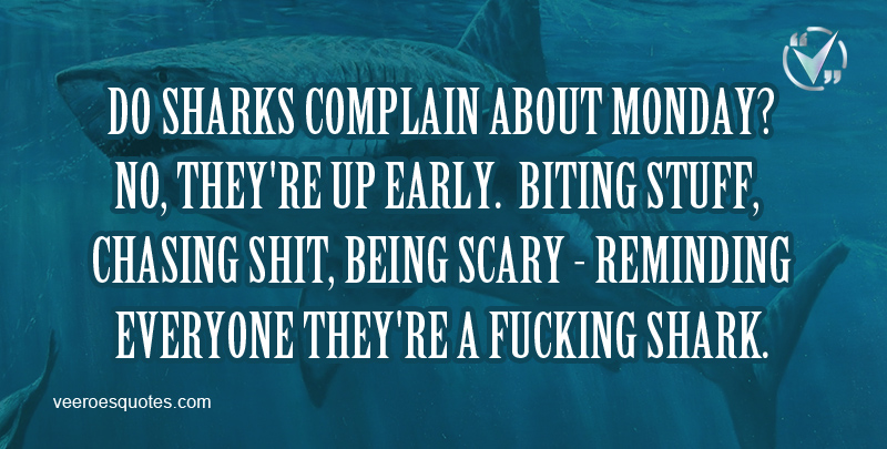 Do Sharks Complain About Monday? No. They're up Early. Biting Stuff, Chasing Shit, Being Scary - Reminding Everyone They're A Fucking Shark.