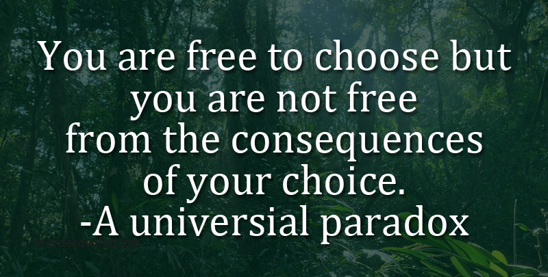 You are Free to Choose but You are Not Free from the Consequences of Your Choice. ~ A Universal Paradox.