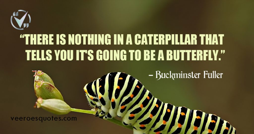 There is nothing in a caterpillar that tells you it's going to be a butterfly. Buckminster Fuller Quotes