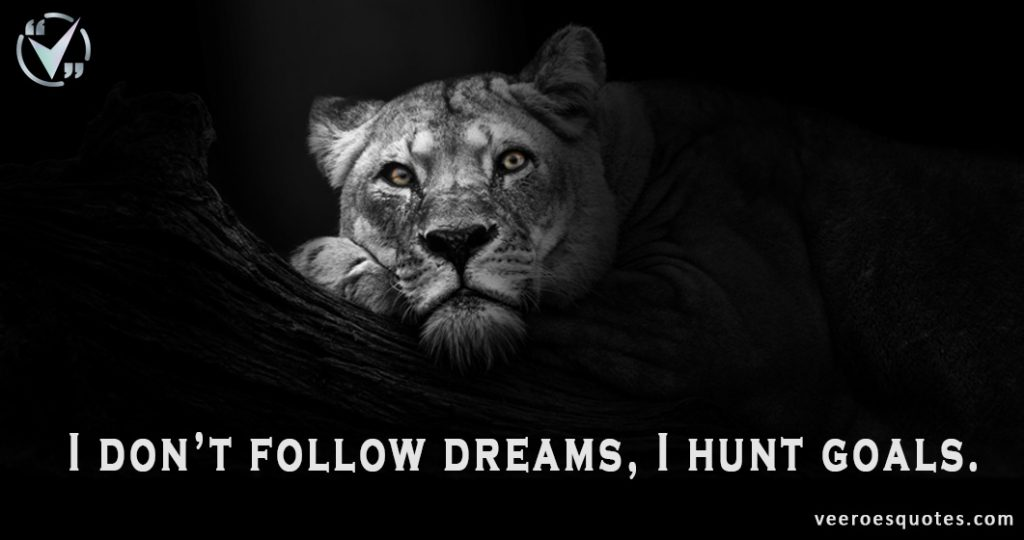 I don't follow dreams