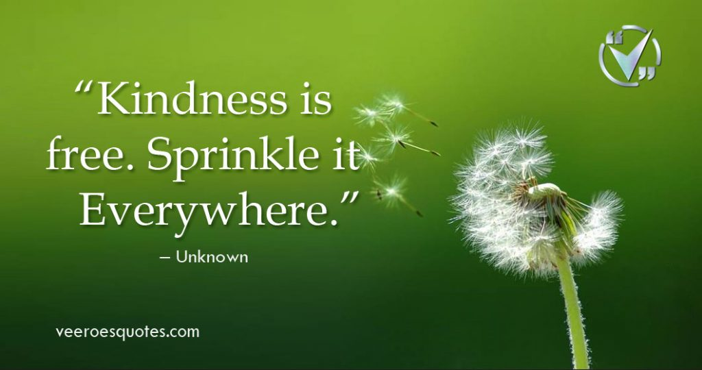 Kindness is free. Sprinkle it Everywhere.
