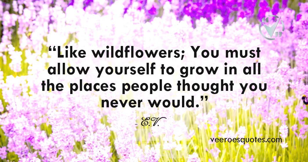 like wildflowers you must