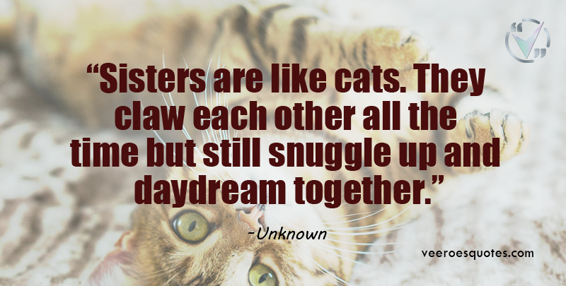 sisters are like cats