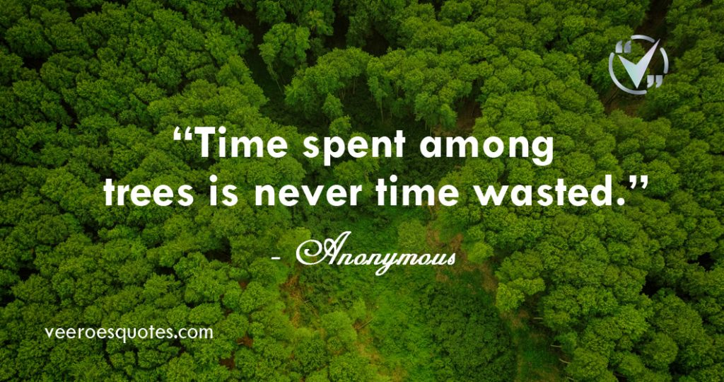 time spent among trees is never time wasted